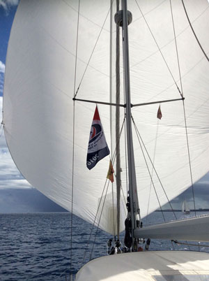 Elvstrom Sails Blue Water Runner downwind cruising